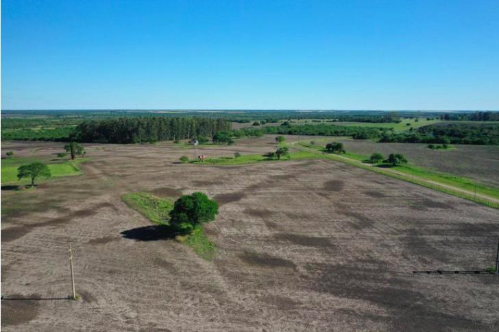 La fantasía de las tierras improductivas